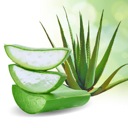 Affirmative Information about ALOE VERA