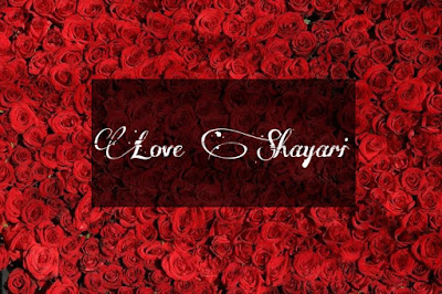 Love Shayari in English and Hindi