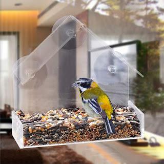 suction cup bird feeder, feed the birds, bird feeding, Amazon Prime Day deal