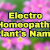 Electro Homeopathy Plant