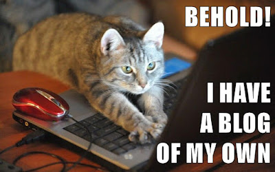 cat typing on laptop