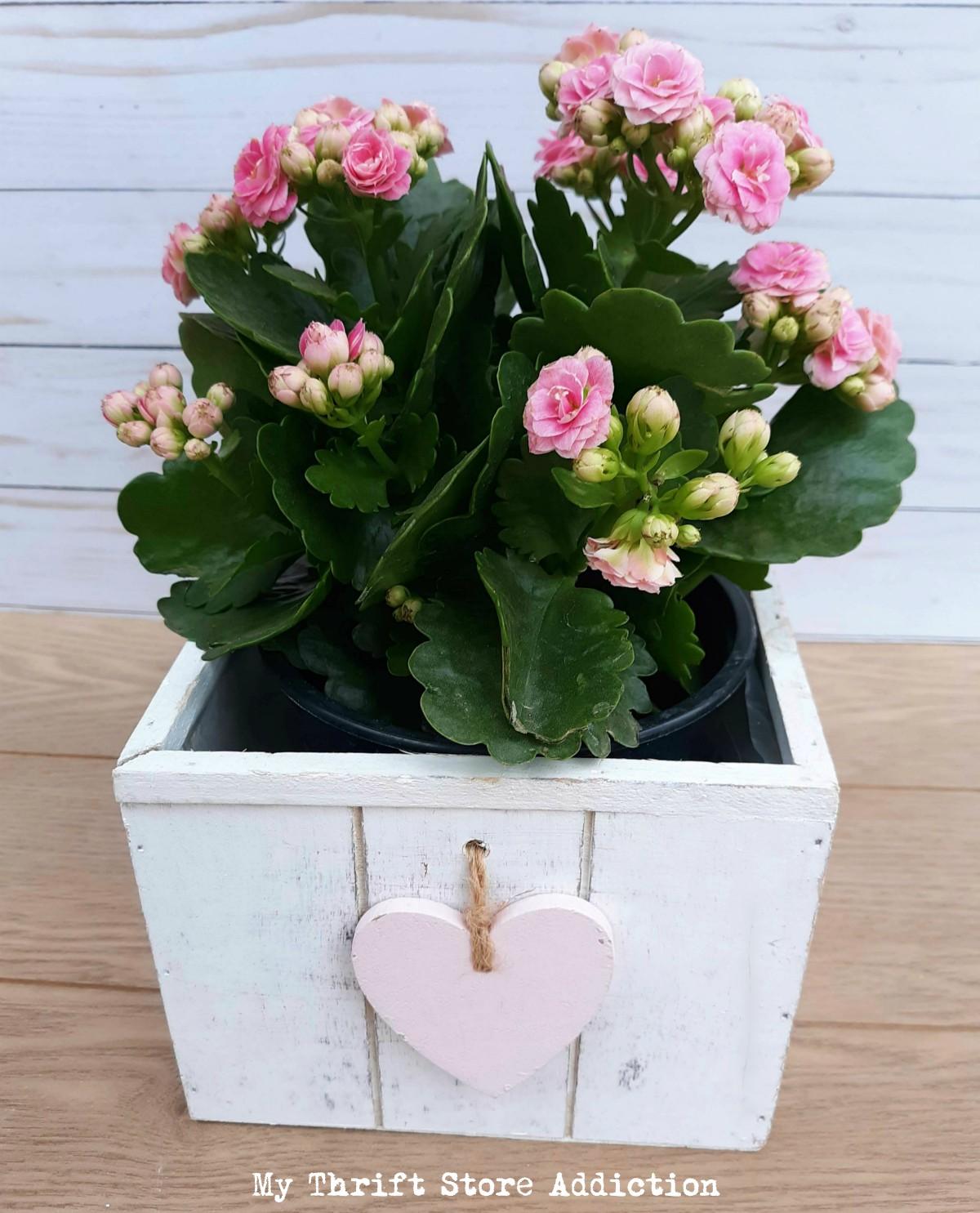 valentine floral planter