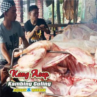 Jasa Kambing Guling Ciamis | 082216503666, jasa kambing guling ciamis, kambing guling ciamis, kambing guling, guling kambing ciamis,