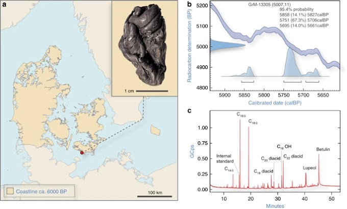 5700 Year Old DNA Recovered | The Neolithic Women