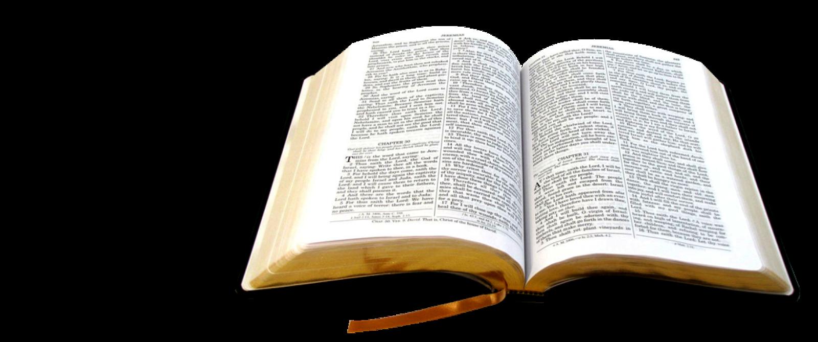 El Matrimonio Biblia Reina Valera : Biblia catolica descargar reina valera gratis
