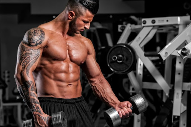 effective bodybuilding tips