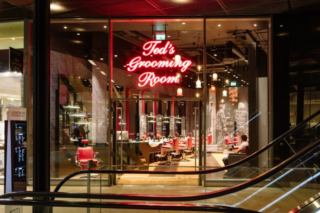 Ted's Grooming Room - Ted in the City