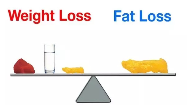 Losing Weight And Losing Fat