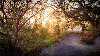 sunsets, #payabay, #payabayresort, paya bay resort, nature, beauty, magic of paya,