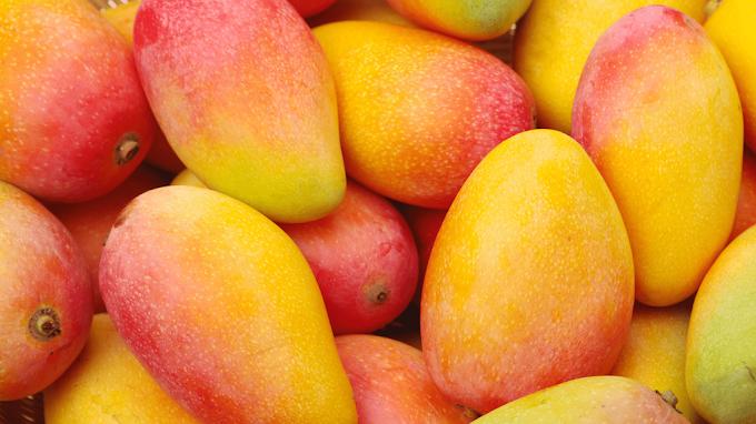 သရက္သီး အေၾကာင္း တေစ့တေစာင္း