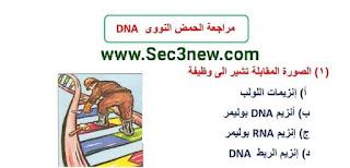 23 سؤال عالي التفكير في ال DNA أحياء ثالثة ثانوي نظام حديث