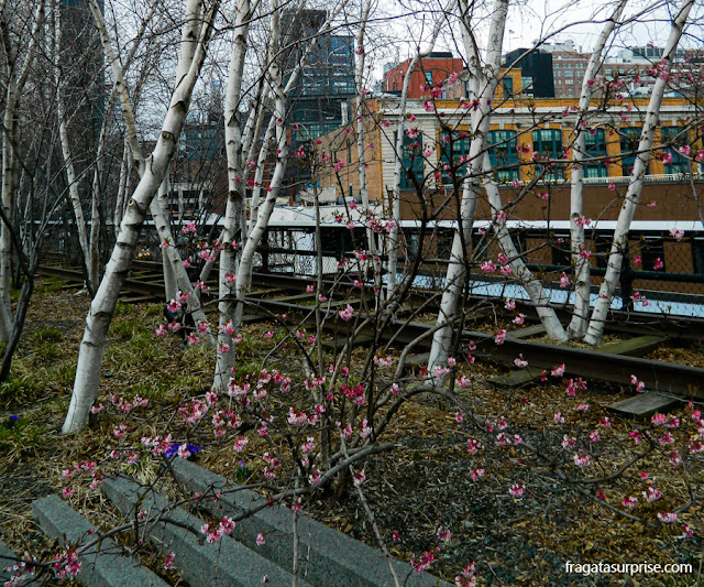 High Line, parque suspenso em Nova York