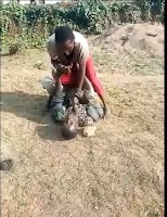 Drama%2B - DRAMA as a woman in Kitale over-powers her husband and beats him like a burukenge after a domestic wrangle (VIDEO)