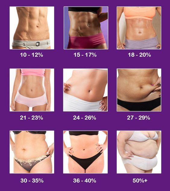 body fat measurement chart