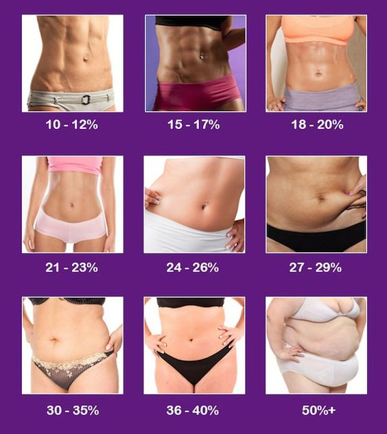 What is Your Body Fat Percentage (BF)?! - Runner Rocky - body fat percentage chart template