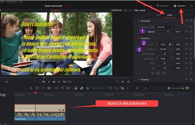 posizionamento, trasparenza e zoom del testo
