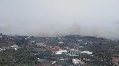 El incendio de El Paso en La Palma, pasa a nivel 2 y ya deja daños materiales en algunas viviendas