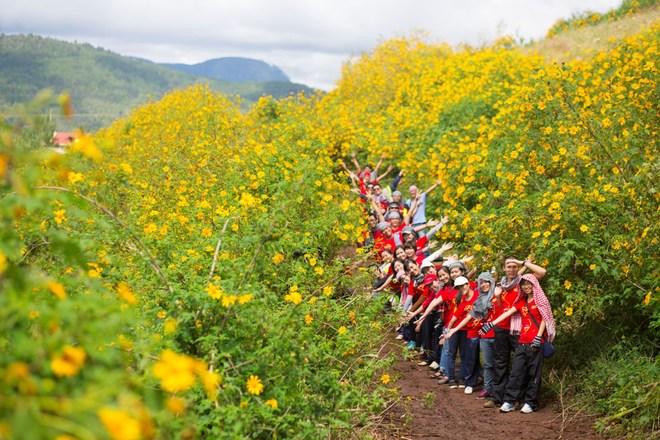 Rủ nhau đi mgắm hoa Dã Quỳ vàng tại Ba Vì