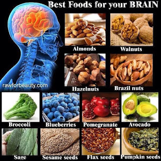 4 of the Best Nutrients for a Healthy Brain
