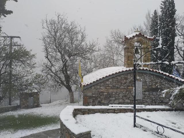 Μεγάλη χιονόπτωση στην Καρυά Αργολίδας (βίντεο)