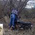 Jovens morreram após a moto em que estavam colidir contra uma árvore