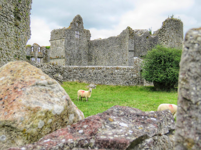Things to do near Athlone: Roscommon Castle