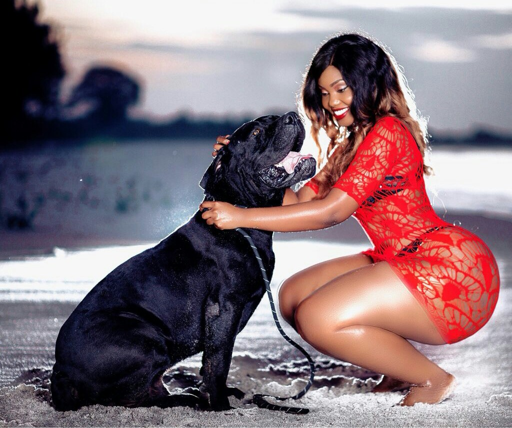 Sanchoka: Sanchi World in red with black bull dog beach