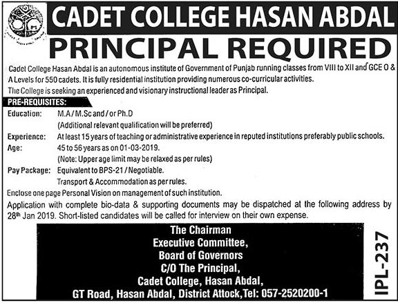 Jobs vacancies In Cadet College Hasan Abdal 11 January 2019