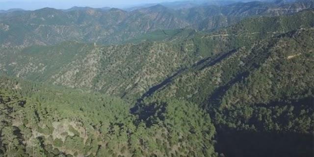 Πάφος: Ζεύγος τουριστών εγκλωβίστηκε σε δάσος – Τους εντόπισε η Αστυνομία