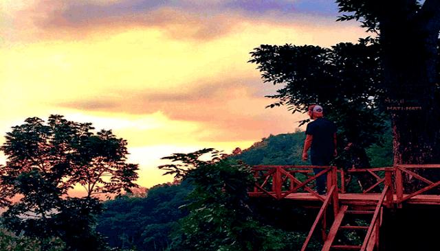 wisata rumah pohon kota madiun