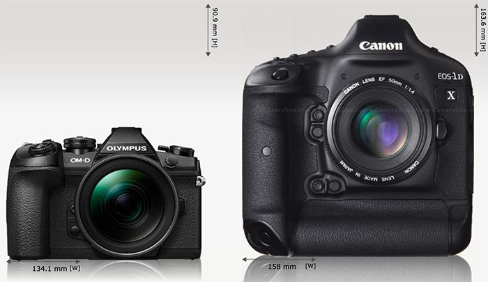 Сравнение габаритов Olympus E-M1 Mark II и Canon EOS 1D X