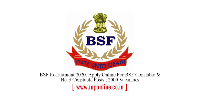 BSF Recruitment 2020, Apply Online For 12000 Constable Posts Vacancies, All India Job,  Male & Females