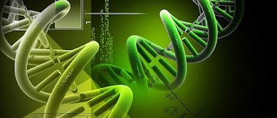 जीव विज्ञान पीडीएफ नोट्स Biologey Notes Part 1 in hindi pdf notes By Anil Dhakad