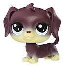 Littlest Pet Shop Singles Dara Longville (#84) Pet