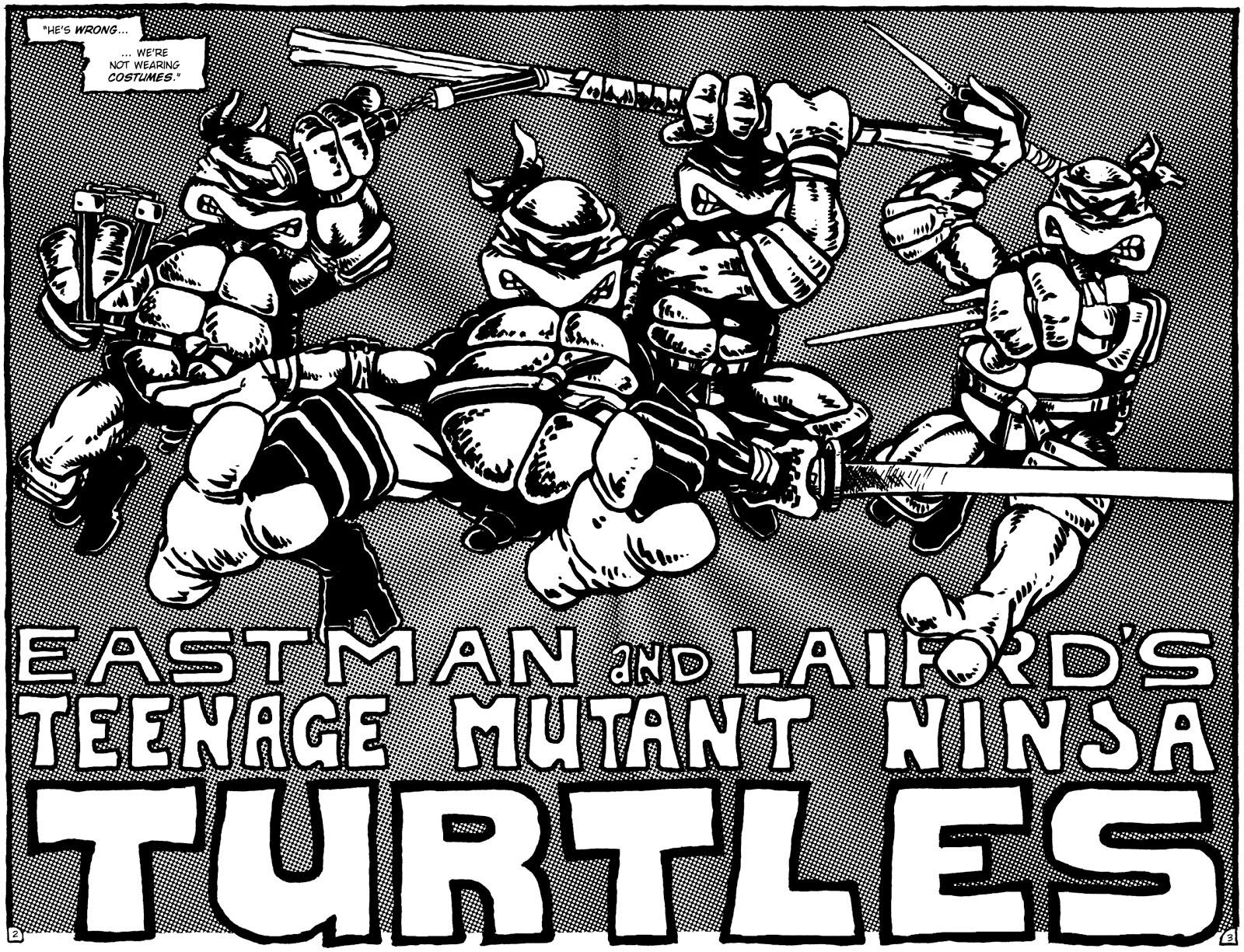 Teenage Mutant Ninja Turtles Eastman Laird