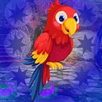 Games4King - G4K Macaw P…