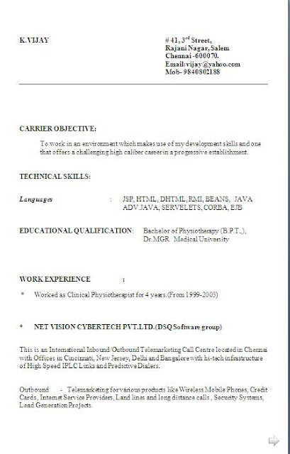 Online Resume Format Resume Format Online Sample Resumes In Word
