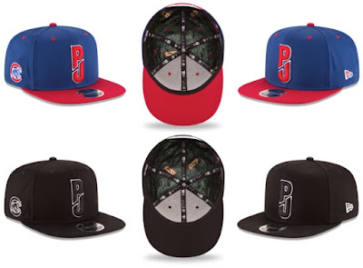 Pearl Jam x New Era Chicago Cubs Wrigley Field 9FIFTY Snapback Hat