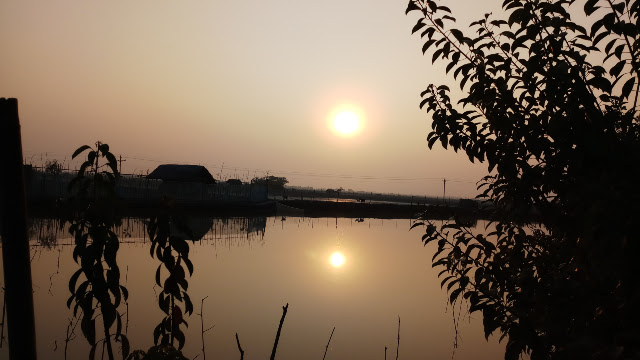 Beautiful sun and nature