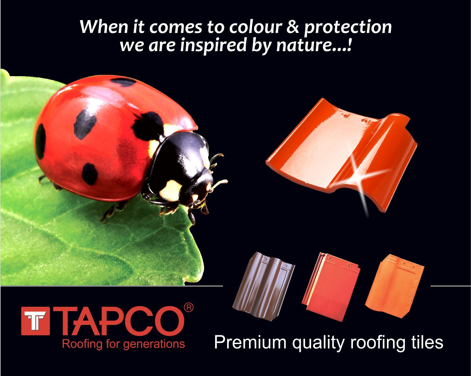 eminentsoft roof tile prices in malappuram
