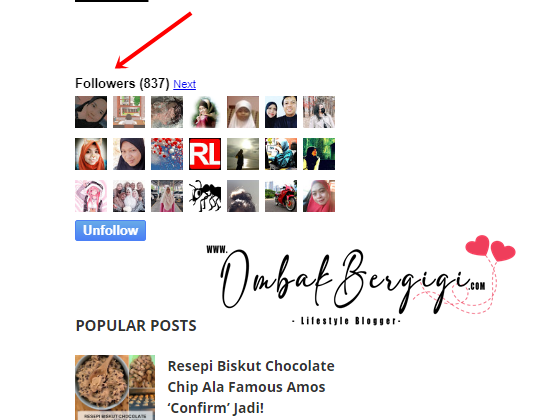 Penting Ke Ada Follower Widget Di Sidebar?