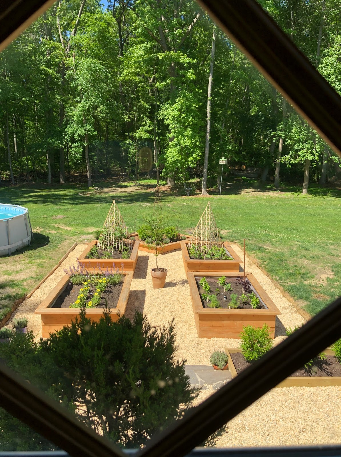 raised garden beds with wood and pea gravel