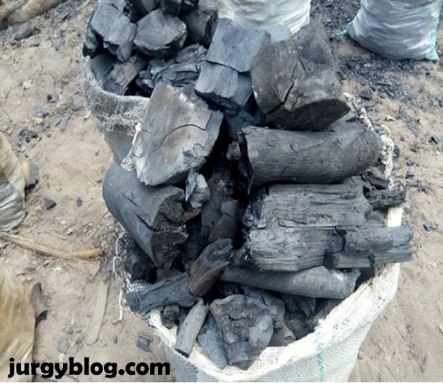 How To Start Charcoal Exporting  Business In Nigeria