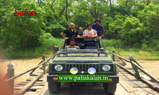 Dudhwa National Park Booking