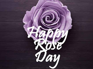 rose day special images