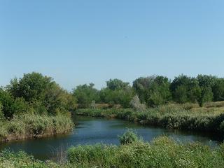 Река Волчья возле Васильковки Днепропетровской обл.