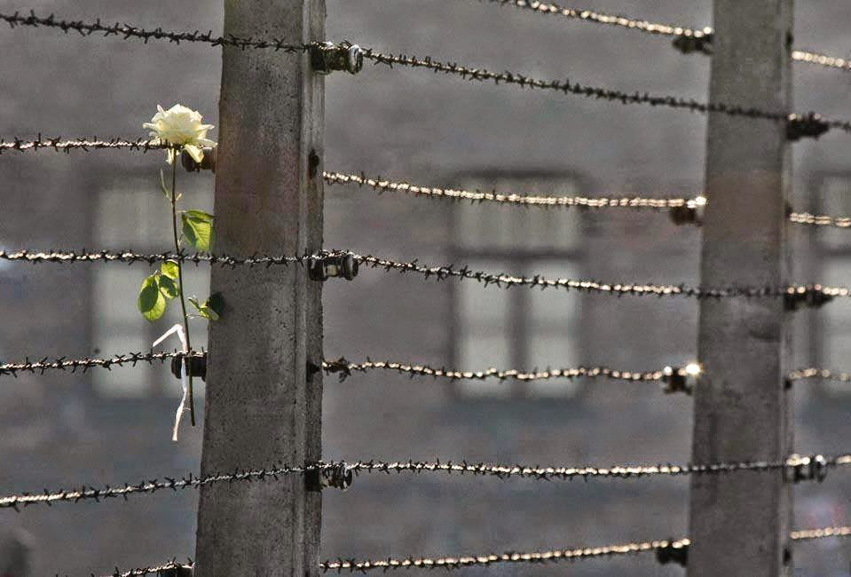 1. Φράχτες συρμάτινοι φαντάζουν οι αποστάσεις... 2. Γέροντας Παΐσιος: Η αγάπη καταργεί τις αποστάσεις. Σοφία Ντρέκου