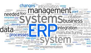 What to Do to Get the Best ERP System for Small Business