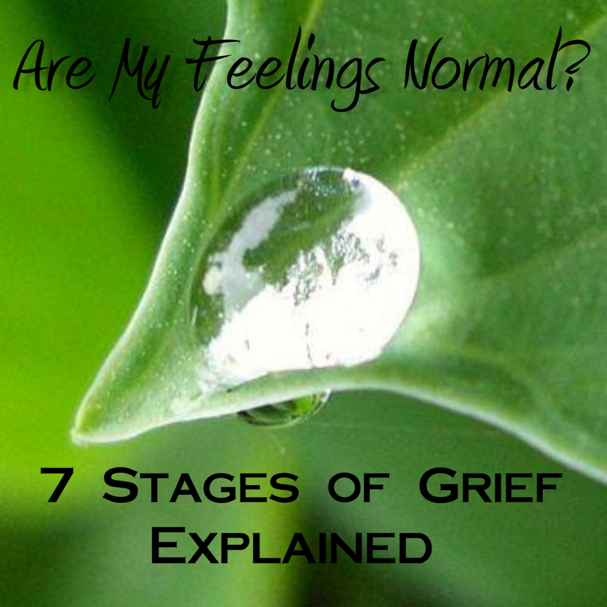 Life Spot Seven Stages Of Grief Explained What You Are