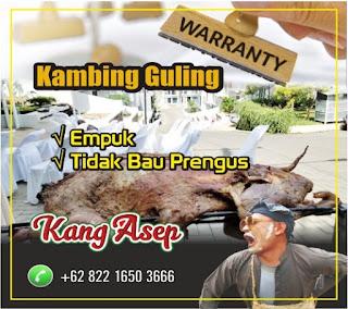 Pesan Antar Kambing Guling di Batujajar Bandung, kambing guling di batujajar, pesan antar kambing guling di batujajar, kambing guling batujajar, kambing guling,